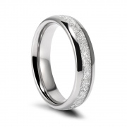 Meteorite Tungsten Ring High Polished Edge 8mm
