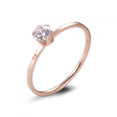 Rose Gold Stainless/Titanium Steel Promise Ring for her